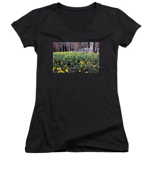 Hills Of Daffodils Women's V-Neck T-Shirt (Junior Cut) by Betty Northcutt