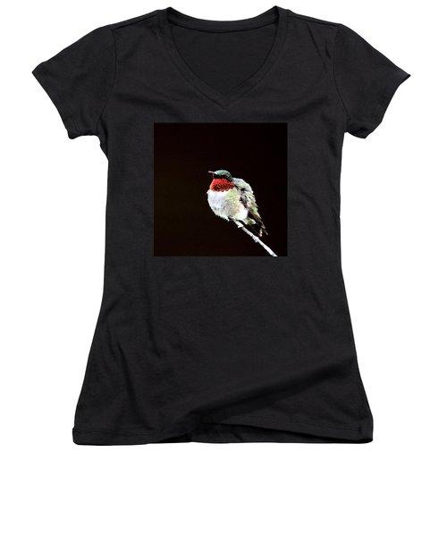 Hummingbird - Ruffled Feathers Women's V-Neck T-Shirt (Junior Cut) by Travis Truelove
