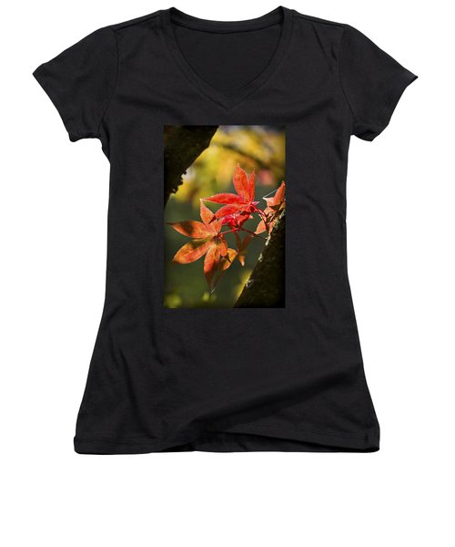 Women's V-Neck T-Shirt (Junior Cut) featuring the photograph In Between... by Clare Bambers