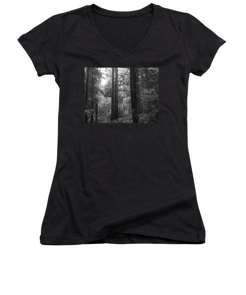 Into The Wood Women's V-Neck (Athletic Fit)