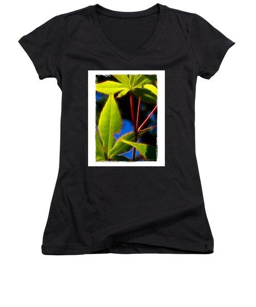 Japanese Maple Leaves Women's V-Neck T-Shirt (Junior Cut) by Judi Bagwell