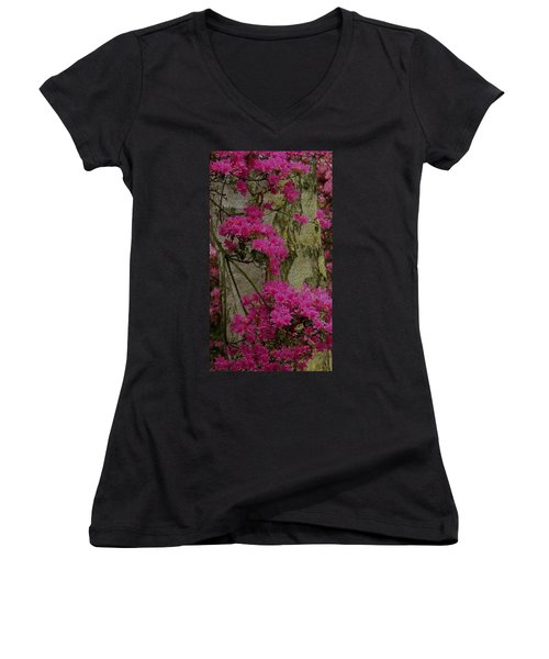 Japanese Painting Women's V-Neck (Athletic Fit)