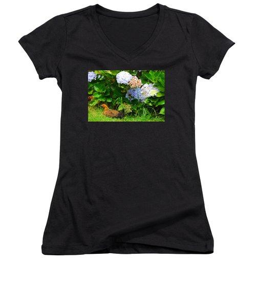 Women's V-Neck T-Shirt (Junior Cut) featuring the photograph Kauai Wildlife by Lynn Bauer
