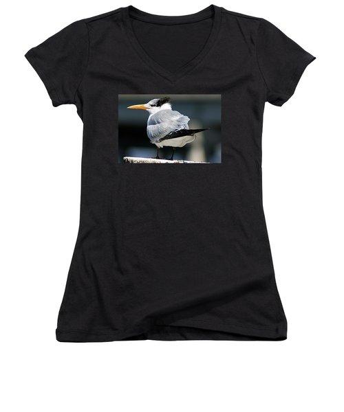 Larry Fine Reincarnated Women's V-Neck T-Shirt