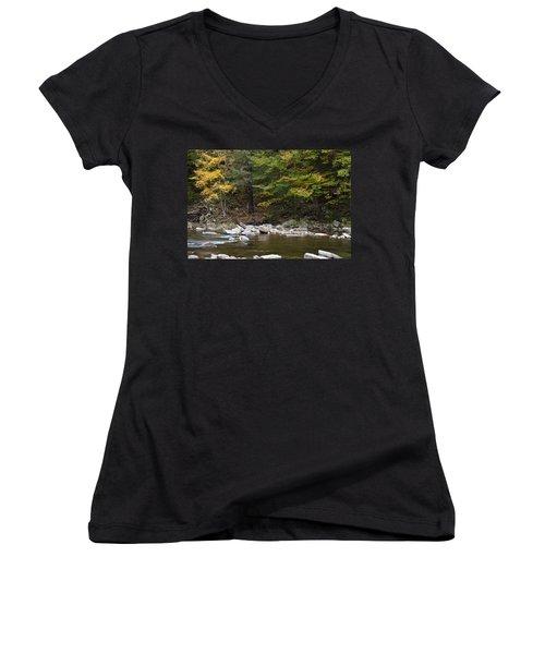 Loyalsock Creek Flowing Gently Women's V-Neck
