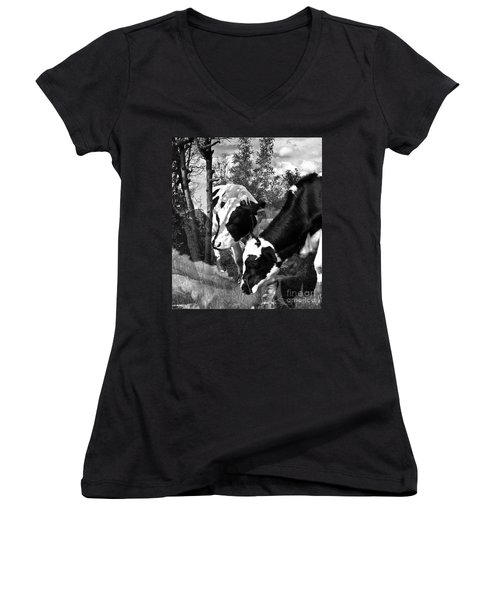 Matilda And Zoey In The Warm Afternoon Sun Women's V-Neck T-Shirt