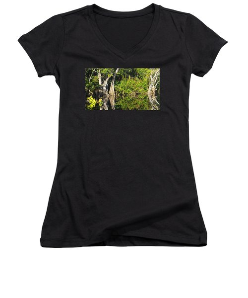 Women's V-Neck T-Shirt (Junior Cut) featuring the photograph Mirror Pond by Anne Mott