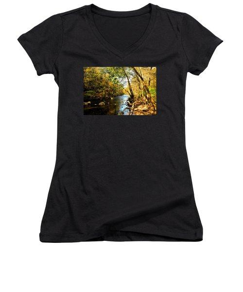 Musconetcong River Women's V-Neck T-Shirt (Junior Cut) by Brian Hughes