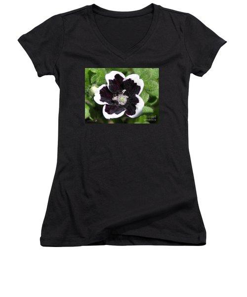 Nemophilia Named Penny Black Women's V-Neck T-Shirt (Junior Cut) by J McCombie