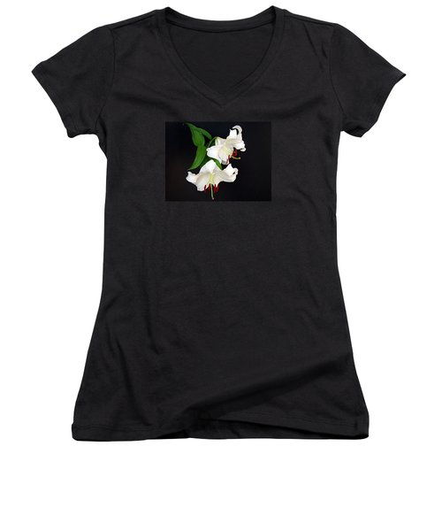 Newly Opened Women's V-Neck T-Shirt (Junior Cut) by Nick Kloepping