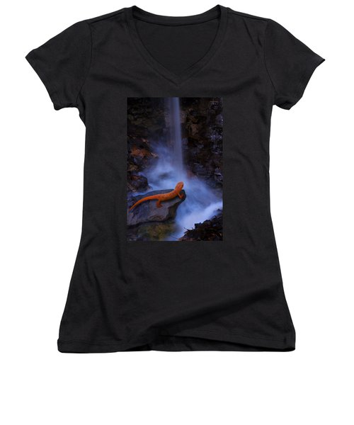 Newt Falls Women's V-Neck T-Shirt (Junior Cut) by Ron Jones