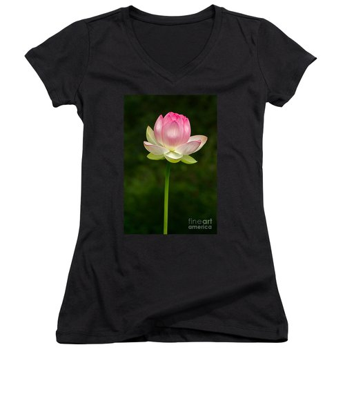 Women's V-Neck featuring the photograph No Less Magical by Byron Varvarigos