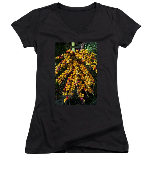 Women's V-Neck T-Shirt (Junior Cut) featuring the photograph Palm Seeds Baroque by Steven Sparks