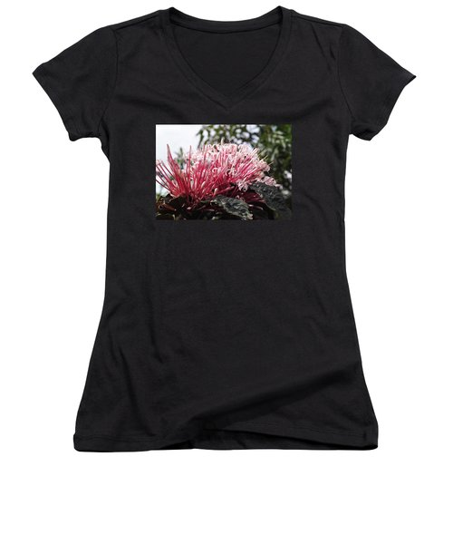 Passion For Pink Women's V-Neck
