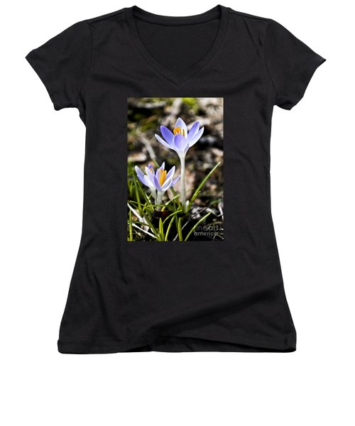 Peaking Spring Women's V-Neck T-Shirt