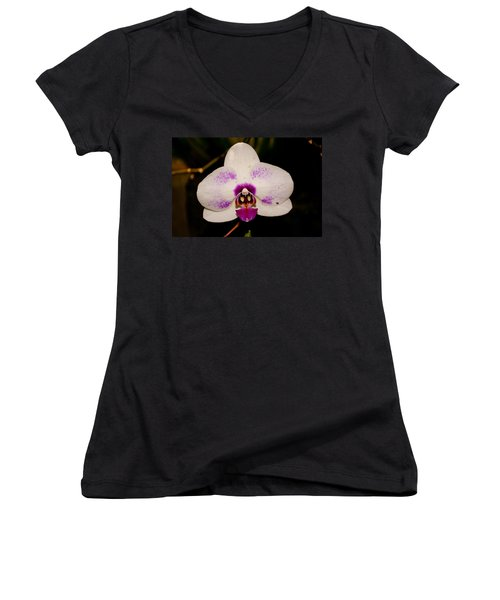 Women's V-Neck T-Shirt (Junior Cut) featuring the photograph Phalaenopsis White Orchid by Tikvah's Hope