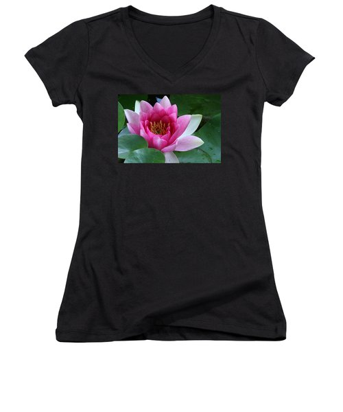 Pink Water Lily Women's V-Neck
