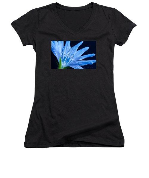 Women's V-Neck T-Shirt (Junior Cut) featuring the photograph Pistil's Of Chicory by Randall Branham