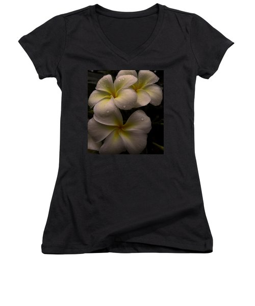 Plumeria Women's V-Neck T-Shirt (Junior Cut) by Dorothy Cunningham
