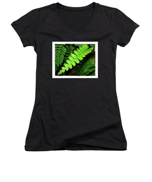 Women's V-Neck T-Shirt (Junior Cut) featuring the photograph Polypody by Judi Bagwell