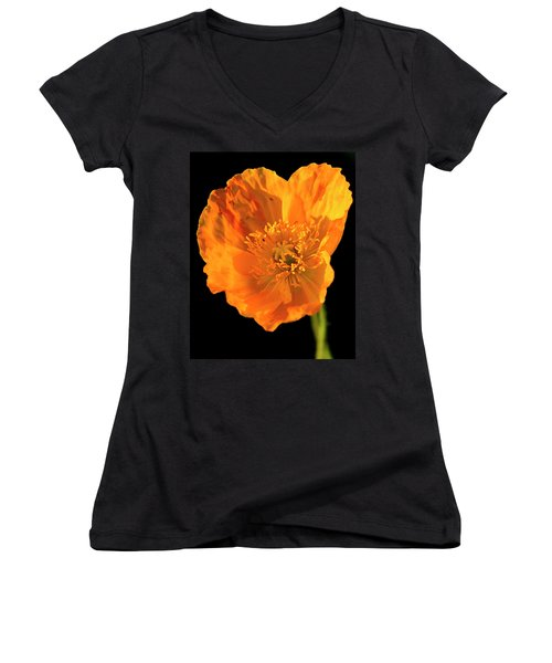 Poppy Women's V-Neck T-Shirt