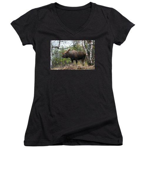 Women's V-Neck T-Shirt (Junior Cut) featuring the photograph Poser by Doug Lloyd