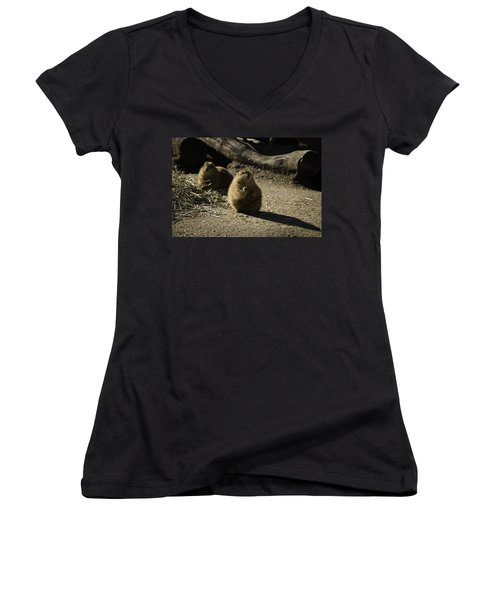 Prairie Dog Sees The Shadow Women's V-Neck