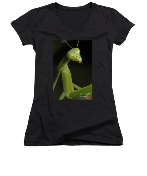Praying Mantis Women's V-Neck