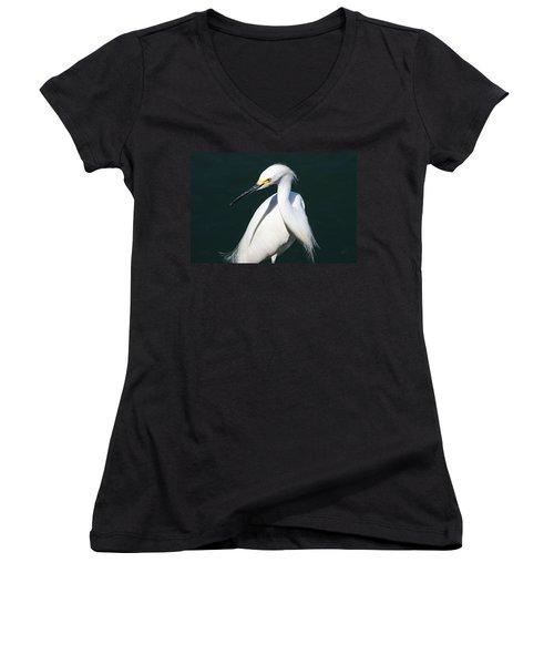 Prey-ing Women's V-Neck T-Shirt