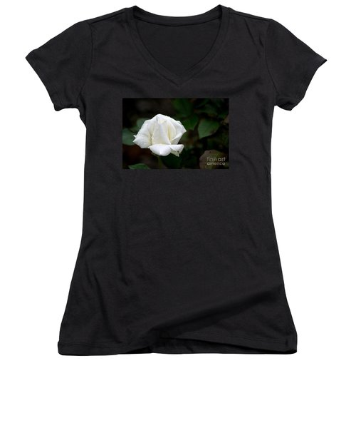 Pure As Snow Women's V-Neck T-Shirt (Junior Cut) by Living Color Photography Lorraine Lynch