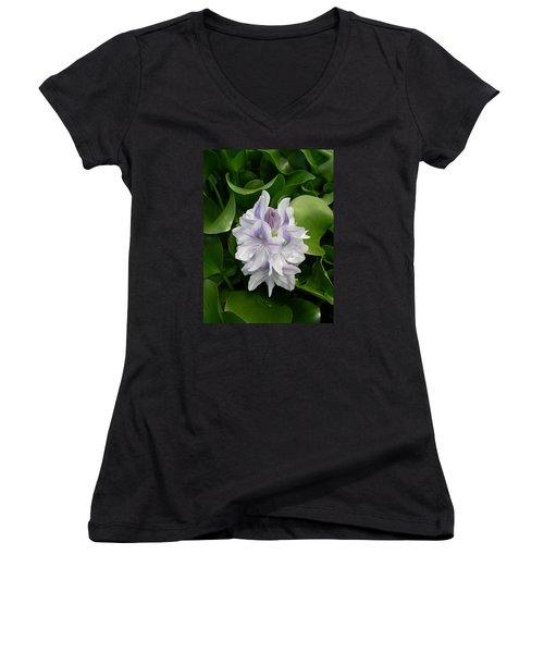 Women's V-Neck T-Shirt (Junior Cut) featuring the digital art Rare Hawain Water Lilly by Claude McCoy