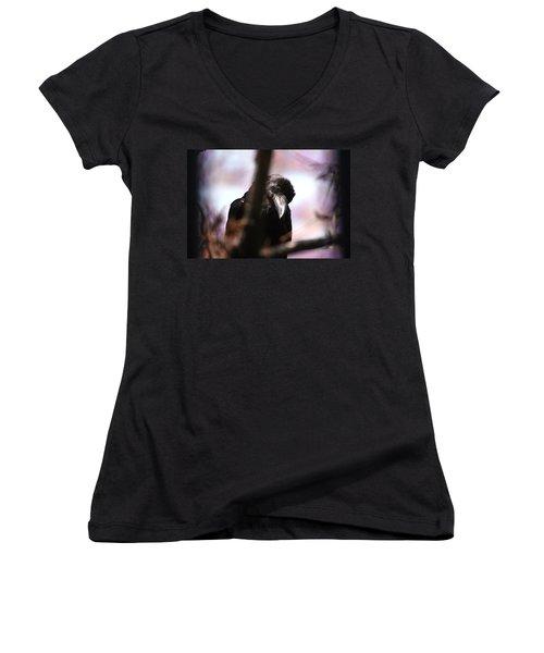 Raven Outside My Window Women's V-Neck T-Shirt