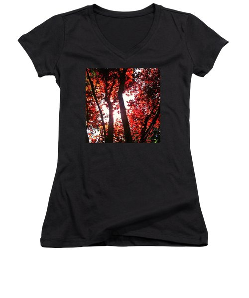 Reaching For Glory - Afternoon Light Women's V-Neck