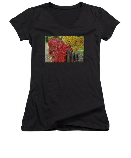 Red Fence Women's V-Neck T-Shirt (Junior Cut)
