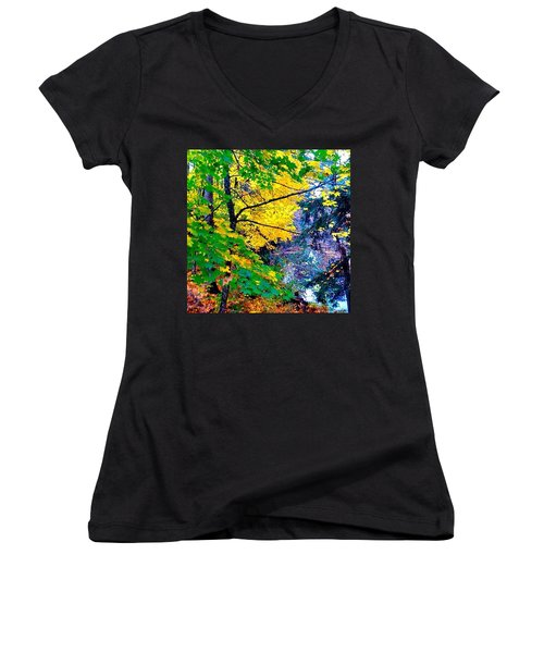 Reed College Canyon Fall Leaves II Women's V-Neck T-Shirt (Junior Cut)