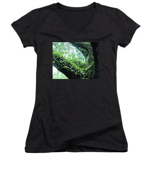 Women's V-Neck T-Shirt (Junior Cut) featuring the photograph Resurrection Fern by Lizi Beard-Ward