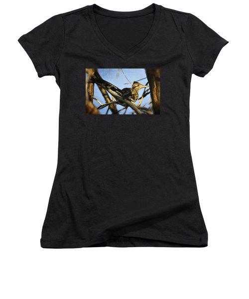 Roadrunner Up A Tree Women's V-Neck T-Shirt (Junior Cut) by Saija  Lehtonen