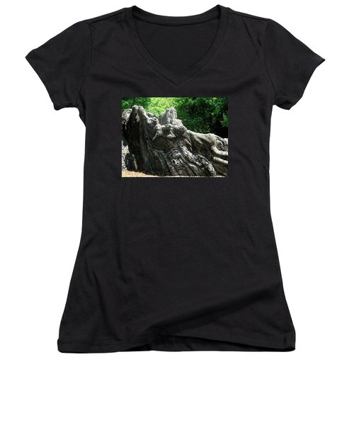 Rock Formation 2 Women's V-Neck T-Shirt (Junior Cut) by Maria Urso
