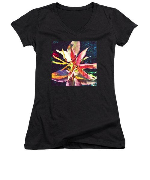 Rosy Glow - Rose Leaves Afternoon Light Women's V-Neck