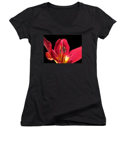 Women's V-Neck T-Shirt (Junior Cut) featuring the photograph Royal Red by Debbie Portwood