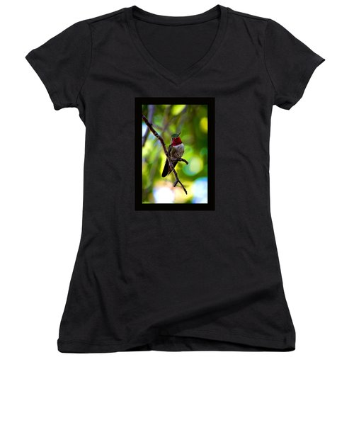 Women's V-Neck T-Shirt (Junior Cut) featuring the photograph Ruby Throated Hummingbird by Susanne Still