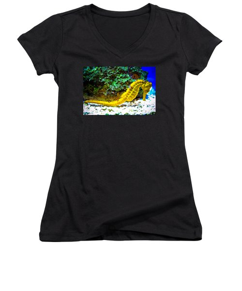 Women's V-Neck T-Shirt (Junior Cut) featuring the photograph Yellow Seahorse by Toni Hopper