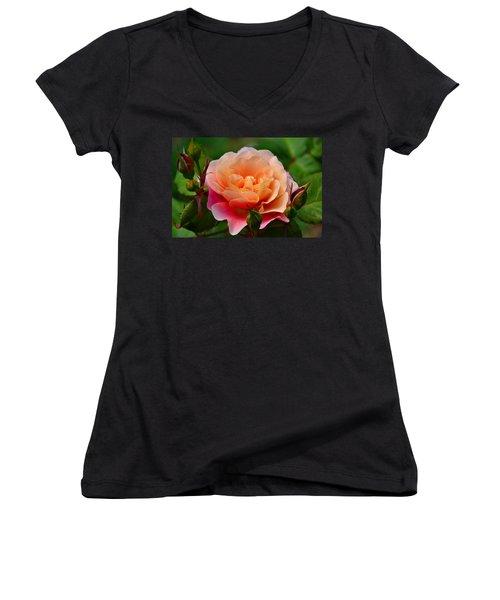 Sherbet Rose Women's V-Neck T-Shirt