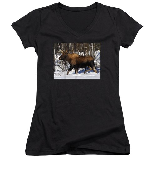 Women's V-Neck T-Shirt (Junior Cut) featuring the photograph Snow Moose by Doug Lloyd