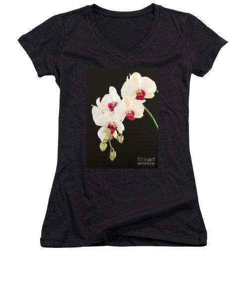 Spray Of White Orchids Women's V-Neck
