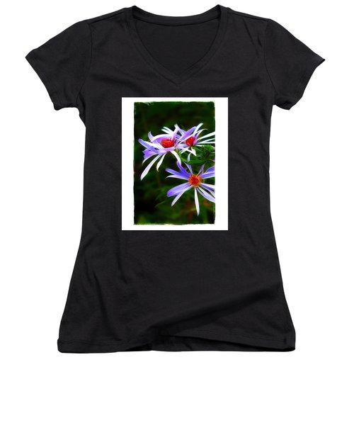 Stars Of Spring Women's V-Neck T-Shirt (Junior Cut) by Judi Bagwell