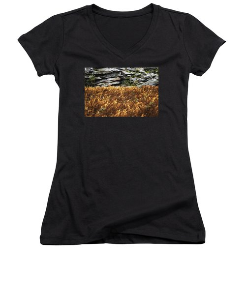 Stone Wall And Fern Women's V-Neck
