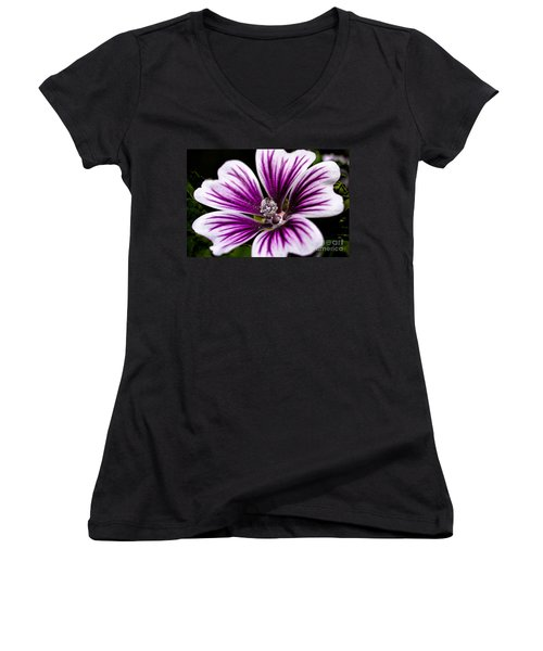 Women's V-Neck T-Shirt (Junior Cut) featuring the photograph Stripped Blossom by Larry Carr