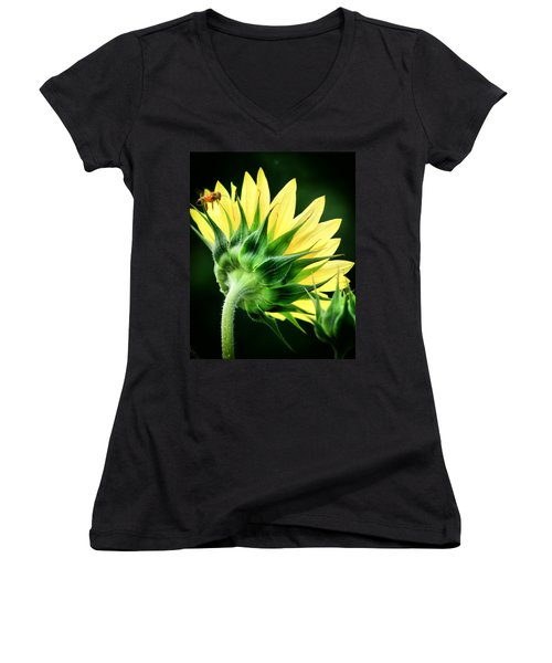 Women's V-Neck T-Shirt (Junior Cut) featuring the photograph Sunflower With Bee by Lynne Jenkins