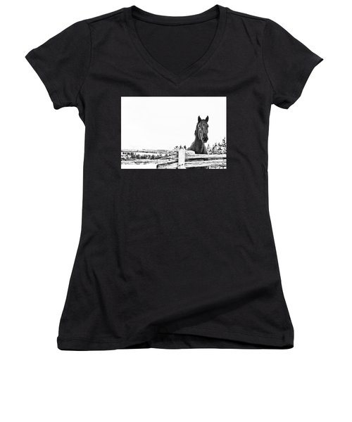 Women's V-Neck T-Shirt (Junior Cut) featuring the photograph Take Me For A Ride by Traci Cottingham